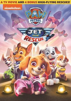 PAW patrol Jet to the rescue