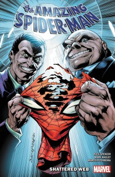 The amazing Spider-Man Shattered web