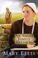 Go to record An Amish family reunion  #4