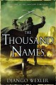 Go to record The thousand names #1